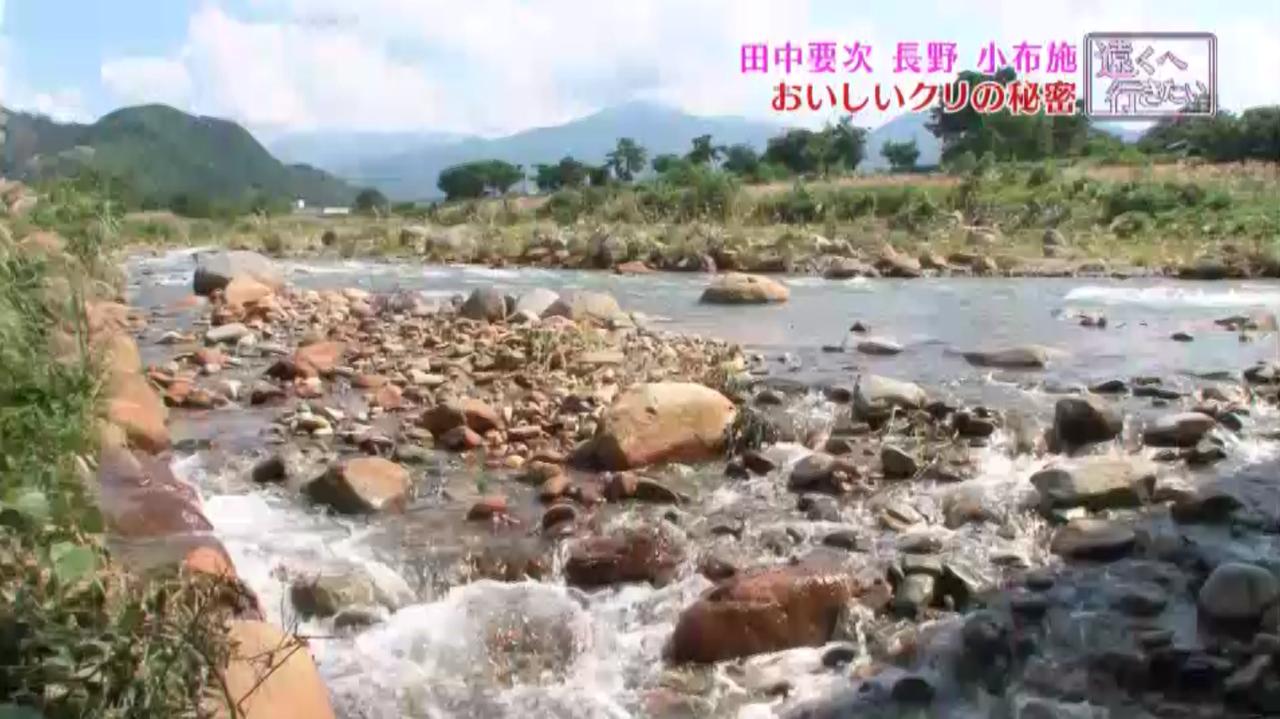 強い酸性を示す松川