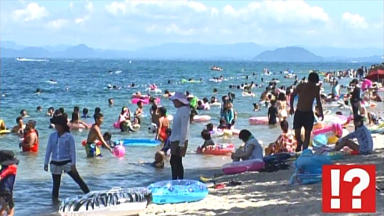 浴 琵琶湖 湖水